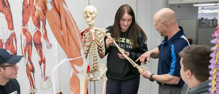 Kinesiology and Sport Studies Diploma
